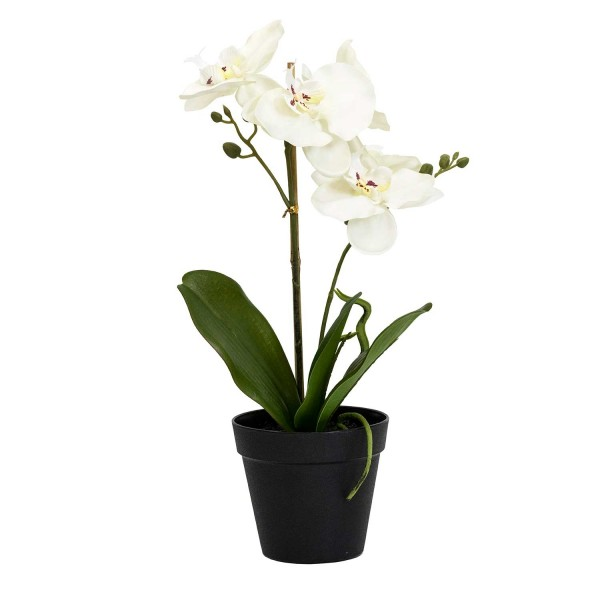 Faux Potted White Orchid Bonsai