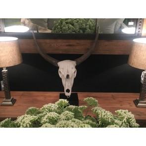 Resin Cow Skull