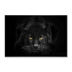 Black Panther Framed Canvas Print