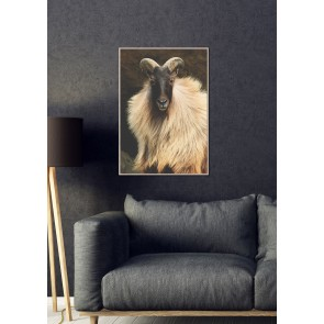 Stately Framed Canvas Print