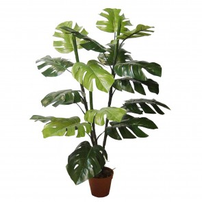Faux Potted Split Philo