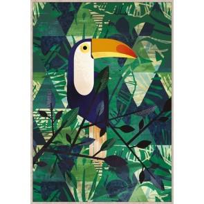 Toucan Framed Canvas Art