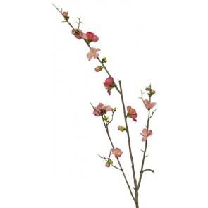 Cherry Blossom Pink - Set of 3