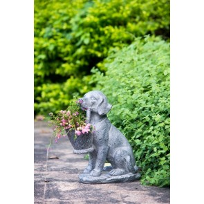 Outdoor Dog Planter