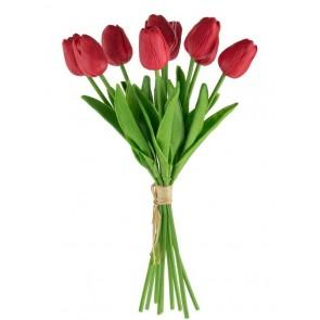 Tulip Spray Red