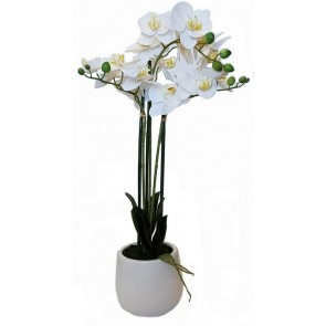 Faux Orchid White with White Pot