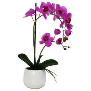 Faux Orchid Pink II with White Pot