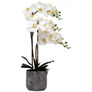 Faux Orchid 2 Spray with Stone Pot