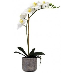 Faux Orchid 1 Spray with Stone Pot